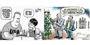 Pesticide laden GMOs not tested by FDA before approval for human consumption